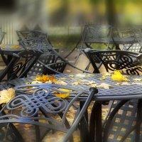 Осень крупным планом... :: Bosanat