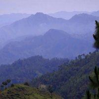 Гималаи :: Михаил Рогожин