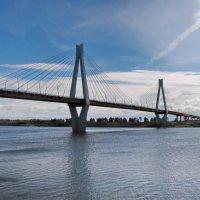 Вантовый мост через Оку. :: Ирина Нафаня
