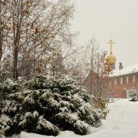 Первый мягкий снег :: Василий Хорошев