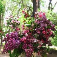 Букет весны. :: Лена Минакова