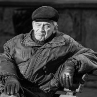 Разморило. :: Александр Степовой
