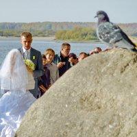 Свадьба в Устье :: Валерий Талашов