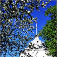 Башня Толгского монастыря. :: Владимир Валов
