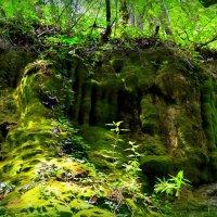 искусство воды и камня :: Ирина Бучева