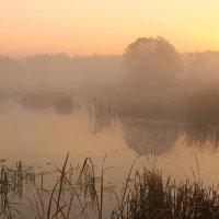 тишина октябрьского утра... :: Александр Герасенков