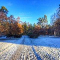 Осень-зима :: Дашка Adms