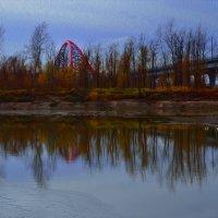 просто поздняя осень в воде отражается... :: Елена Баландина