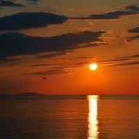 Этот остров мечтает обо мне... или я о нем... :: Александр Бойко