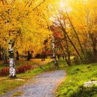 осень :: Tasha