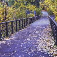 мост :: Tasha