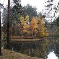 Старый пруд...5 :: Nikanor