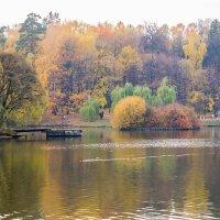Золотая осень :: Николина Вишнякова