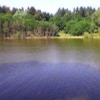 Озеро :: Миша Любчик