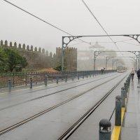 Прогулка под дождем :: Ирина Нахтигаль-Шумская