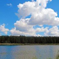 Небо над Коробчицами :: Лёля Совина