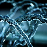 Это не молекула ДНК, это струя воды фонтана))) :: Ирина Серова
