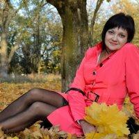 Золотая осень :: VLADIMIR YKIMENKO