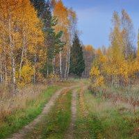 Осенняя дорога :: Игорь Ратников