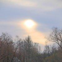 Рассвет над Павловском.... :: Tatiana Markova