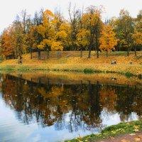 осень :: navalon M
