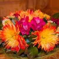 Цветочки :: Kasatkin Vladislav