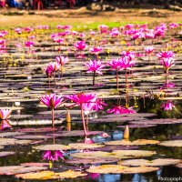 Камбоджа :: Олег Куваев