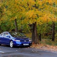 Осень :: Dzmitry Moisa