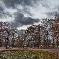 Поздняя осень :: Viktor Pjankov