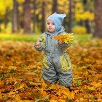 Золотая осень :: Евгений Казаков