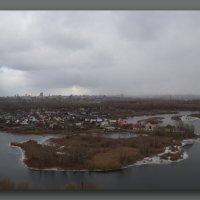 Птица Октябрь :: Арсений Корицкий