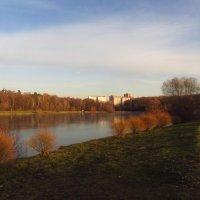 Теперь вечереет рано - IMG_3728 :: Андрей Лукьянов