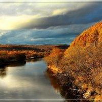 наша золотая осень :: Наталья Мерзликина