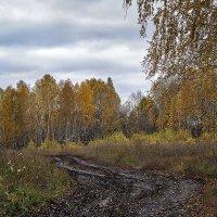 Осенняя распутица. :: Лилия *