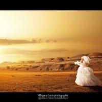 В золотом плену заката :: Евгений Ланин
