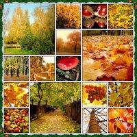 Все краски осени :: Ирина Князева