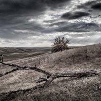 Осень :: Марат Закиров