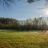 Осеннее солнце :: Максим Рублев