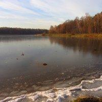 Лебедянский пруд встал - IMG_3696 :: Андрей Лукьянов