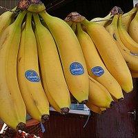 Банановые гроздья :: Нина Корешкова