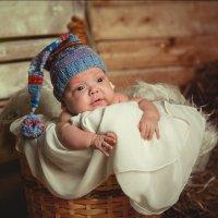 Маленький гномик :: Юка Добрынина