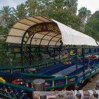 Полинезийская прогулочная лодка. :: Надежда