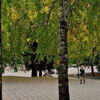 Осень :: lyuda Karpova