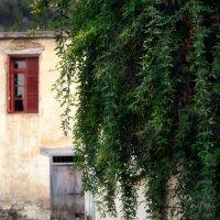 Деревня Беллапаис, Северный Кипр :: Anna Lipatova
