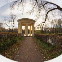 Парк Екатерингоф, дорожка к ротонде :: Владимир Демчишин