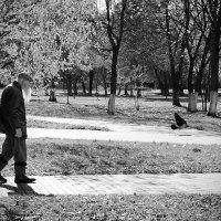 Старость :: Сергей Болдыш