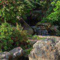 Японский парк :: Witalij Loewin