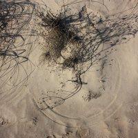 Ветер на песке :: Gennadiy Karasev