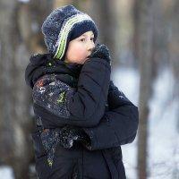 зима... :: Олег Петрушов
