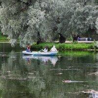 Гатчинский парк. Белое озеро :: Наталья